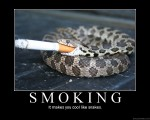 smokingsnakeah5